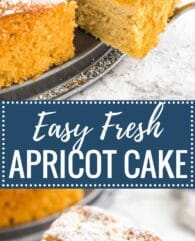 Apricot Cake is so easy to make from scratch! This simple but so flavorful cake is topped with fresh apricots and is perfect for summer entertaining.