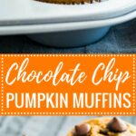 These Pumpkin Chocolate Chip Muffins make a great breakfast, snack, or lunchbox treat! With just the right balance of flavors and loaded with chocolate chips, these pumpkin muffins are sure to be a crowd-pleaser.