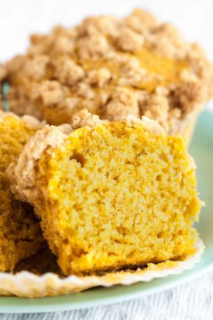 Pumpkin Spice Muffins are so flavorful, have a tender texture and are so moist!  With a crunchy pumpkin spice crumb topping, these pumpkin muffins are quick and easy to whip up and have a great pumpkin flavor. A perfect fall recipe!