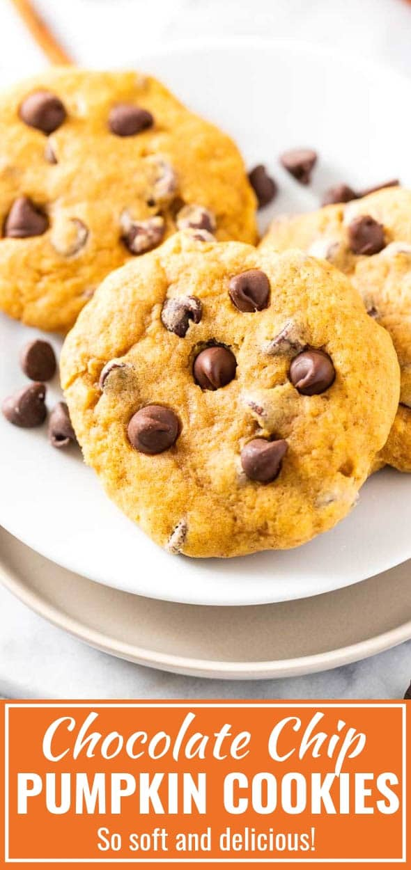 Pumpkin Chocolate Chip Cookies made with just the right amount of spice and studded with chocolate chips. A soft and chewy pumpkin cookie that's perfect for fall and quick and easy to make from scratch without a box mix. #pumpkinpuree #pumpkincookies #pumpkinspice #chocolatechipchookies #pumpkinchocolatechipcookies #fallbaking #fall #recipes #cookies