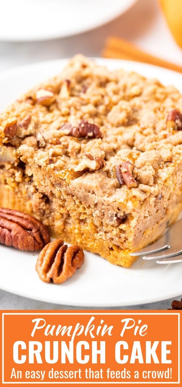 Pumpkin Crunch Cake is the perfectfall dessert for a crowd that can be made in minutes and is a great alternative to traditional pumpkin pie. With minimal effort and just a handful of simple ingredients, you can create an indulgent and flavorful pumpkin dessert that's perfect for Thanksgiving or any other day! #PumpkinCrunchCake #ThanksgivingDesserts #SheetCake