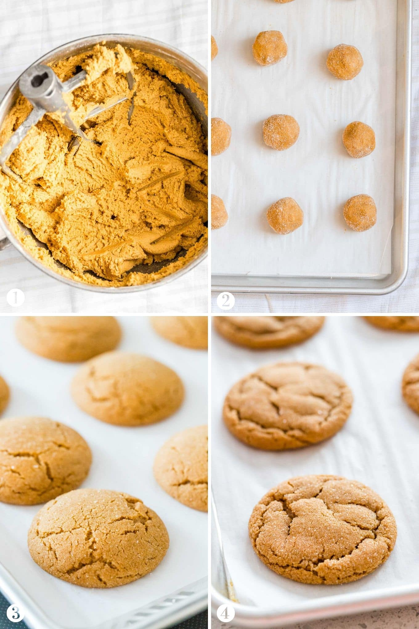 How to make Ginger Snap Cookies Collage